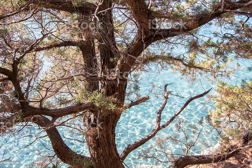 Beautiful rocky beach on Sardinia, Italy stock photo