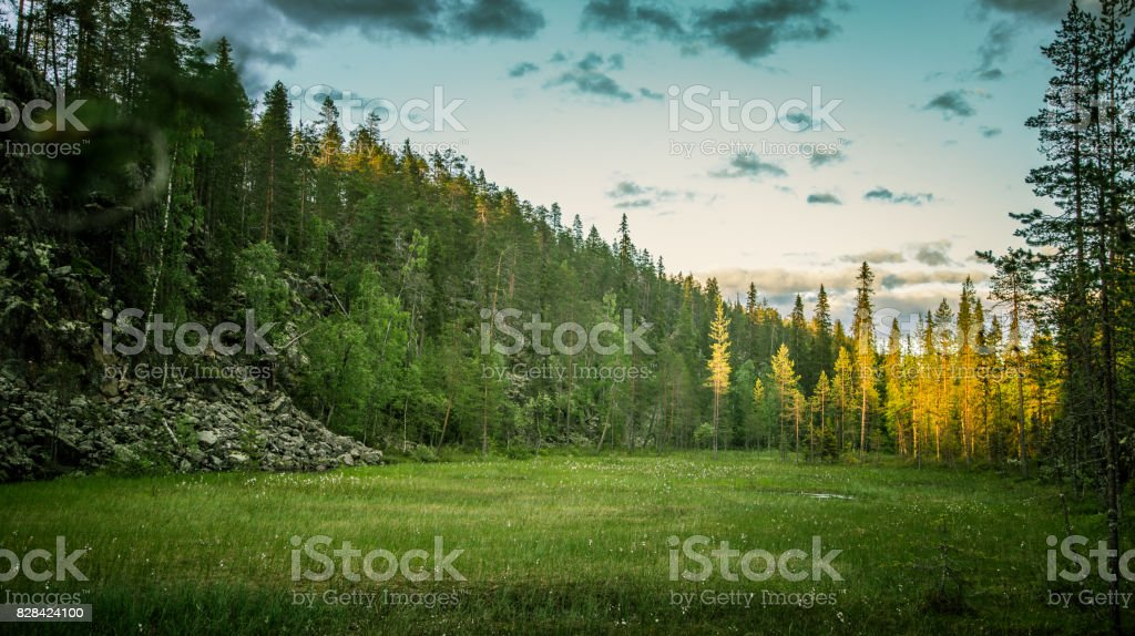 A beautiful rocky forest landscape in Finland stock photo