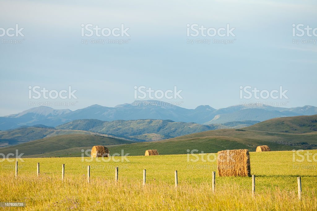 Beautiful Rolling Foothills of Alberta stock photo