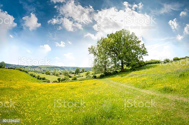Photo of Beautiful Rolling Landscape On A Summers Day In The Cotswolds
