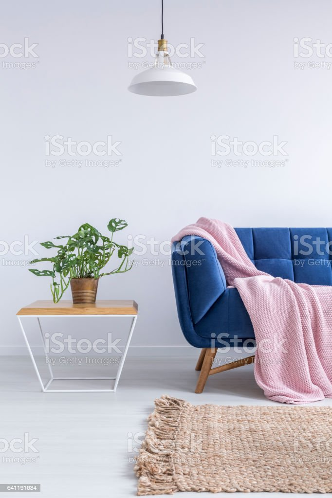 Beautiful room with blue sofa stock photo