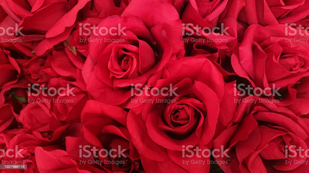 Fundo de bouguet rosa linda. - foto de acervo
