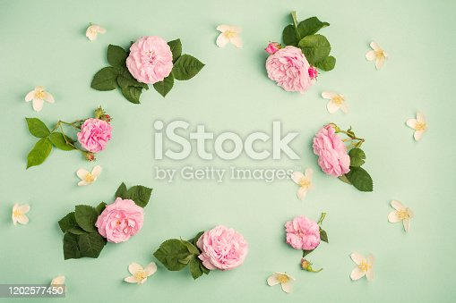 1183352589 istock photo Beautiful rose flowers on green background. Soft light color. Top view, copy space. 1202577450