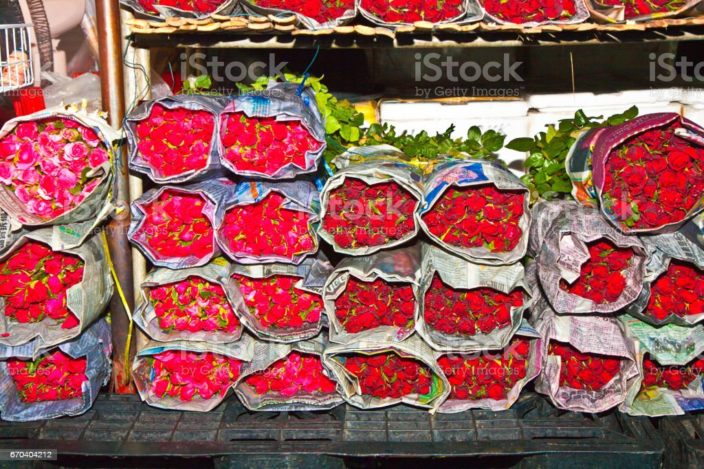 beautiful roses at the central flower market stock photo