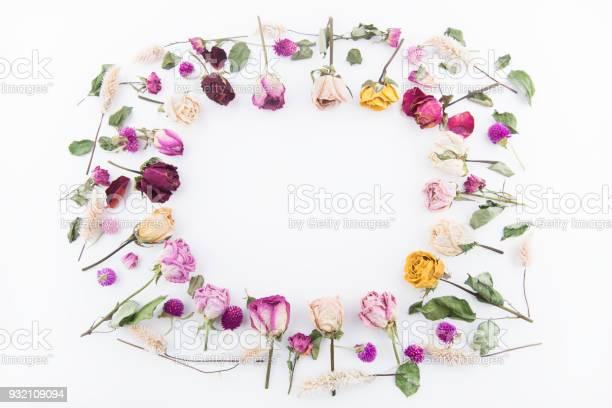 Beautiful roses background picture id932109094?b=1&k=6&m=932109094&s=612x612&h=ntyc jymnvpju vqbolvejnkjxjkzrtod9kdoiagovi=