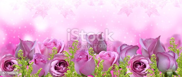 istock Beautiful roses background-banner 577965626