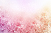 istock beautiful roses flower border in soft vintage tone color with glitter background for valentine 1022617566