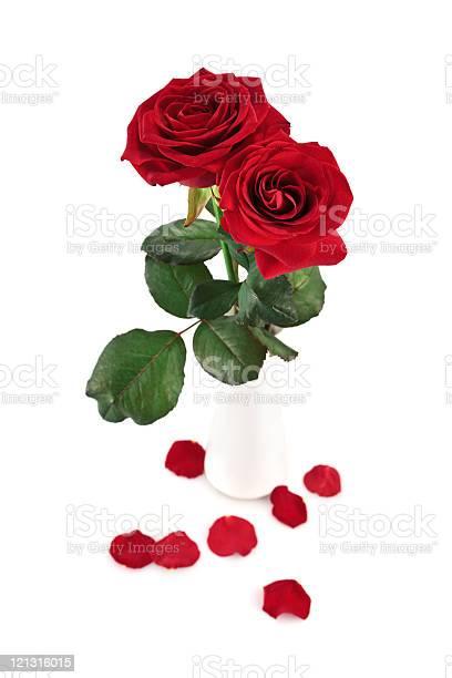 Beautiful roses picture id121316015?b=1&k=6&m=121316015&s=612x612&h=ykakzjhhvkjotecvvxnt5iot5vypqo5 zwmvno1lp80=