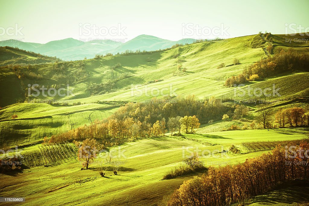 Beautiful Rural Landscape at Sunset, Val d'Orcia, Italy royalty-free stock photo