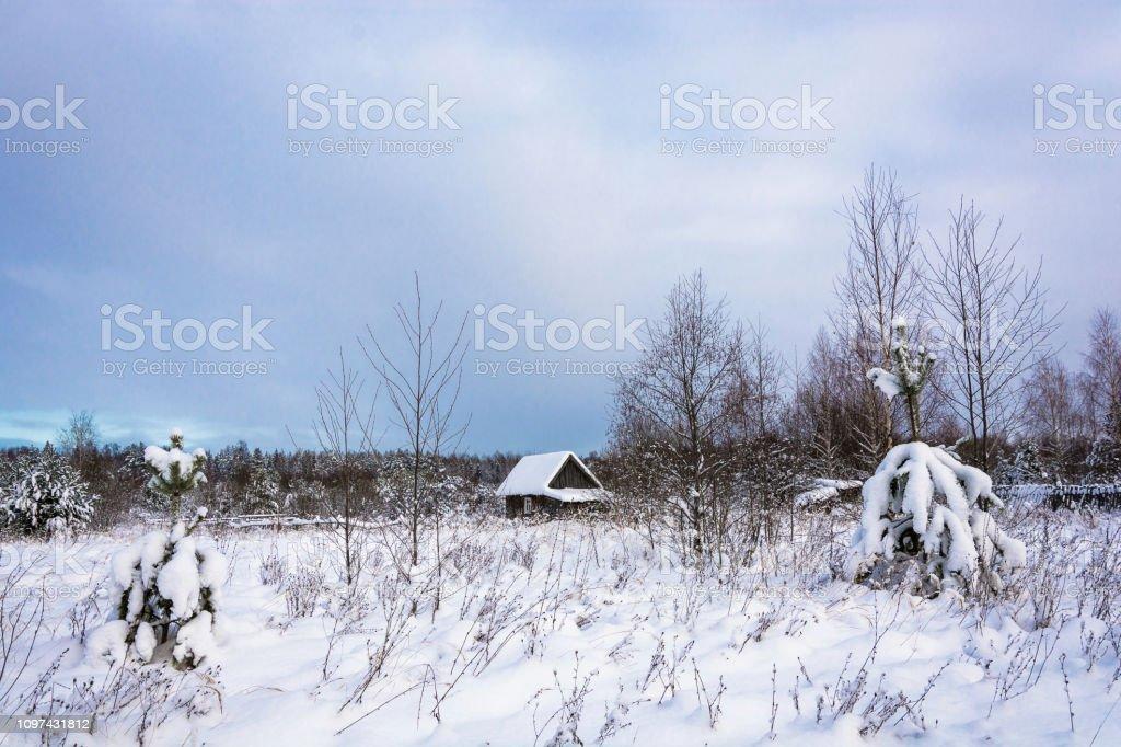 Beautiful rural landscape on a frosty winter cloudy day. стоковое фото