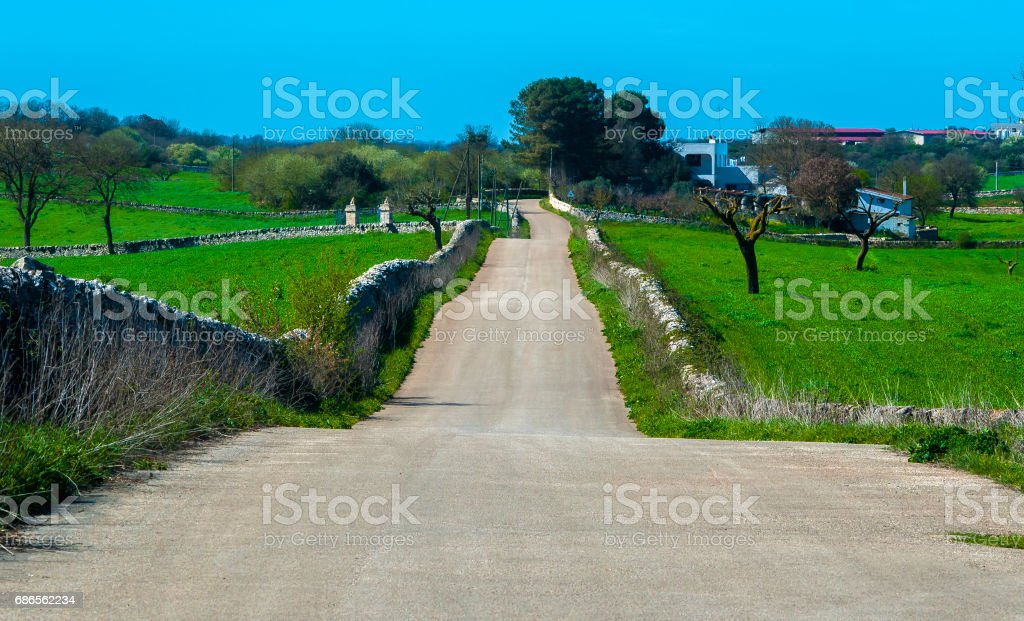 beautiful rural way between stone walls. Apulia royalty-free stock photo