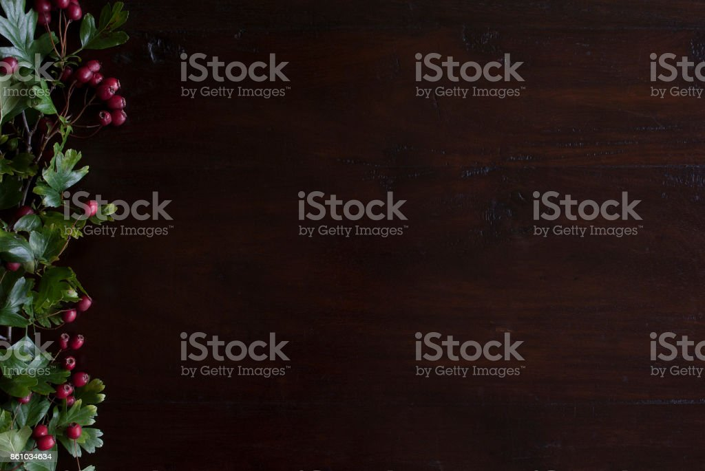 beautiful rustic dark wooden background with hawthorn foliage border at left side stock photo