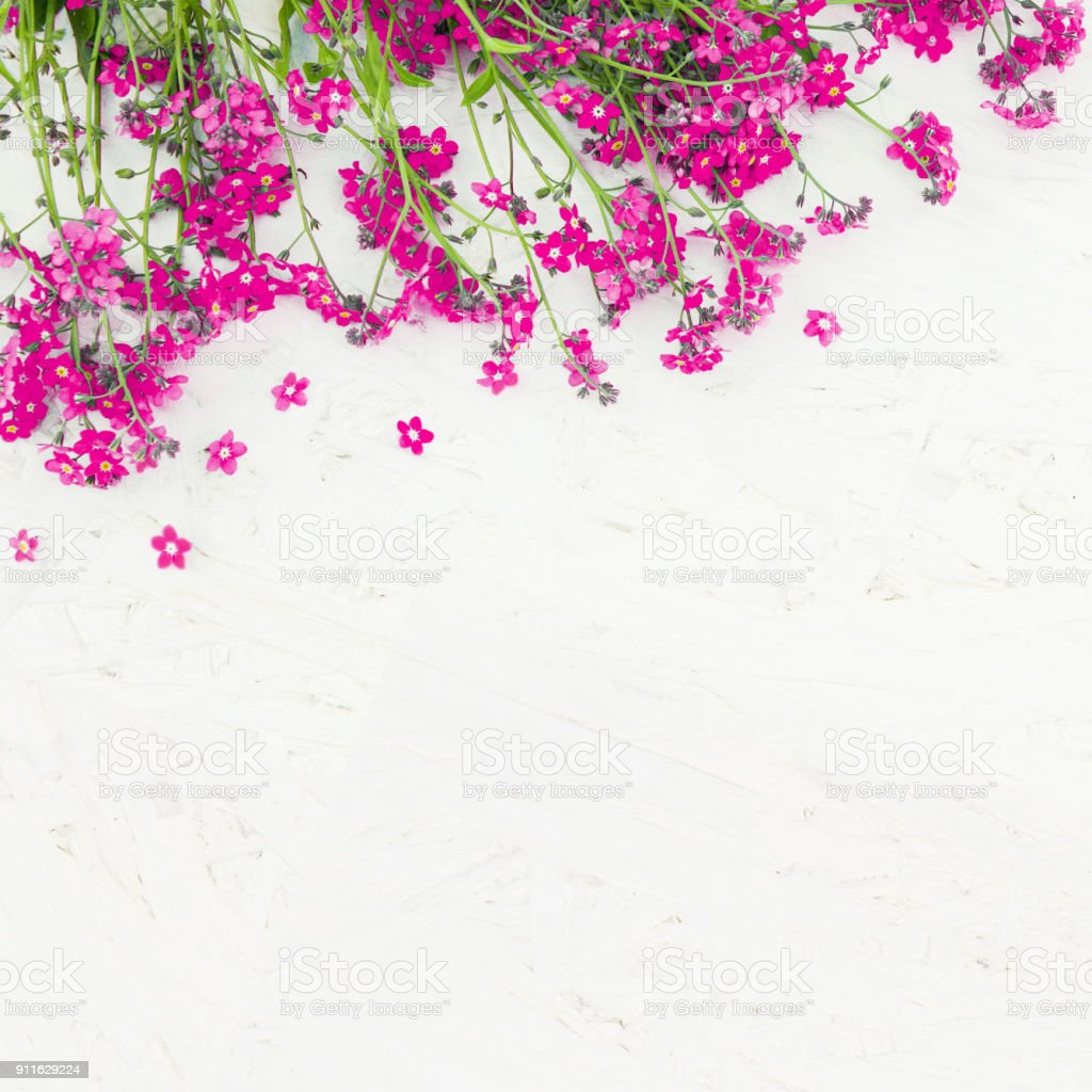 Beautiful Rustic Floral Background Stock Photo Download Image