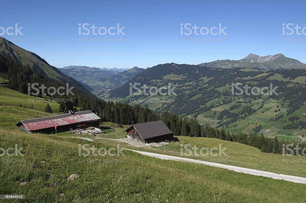 Beautiful Saanenland, region in the Swiss Alps royalty-free stock photo