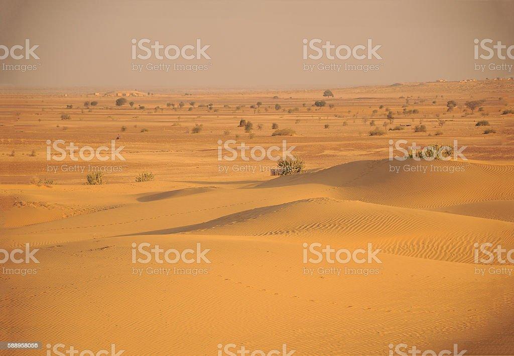 Beautiful sand dunes in Thar Desert, Rajasthan, India stock photo