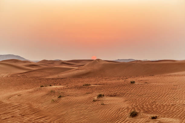 beautiful sand dunes in the desert. - desert stock pictures, royalty-free photos & images