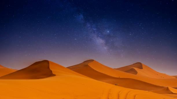 vackra sanddyner i sahara öknen. - sanddyn bildbanksfoton och bilder