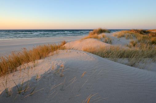 A beautiful sand dunes near the beach during sunrise