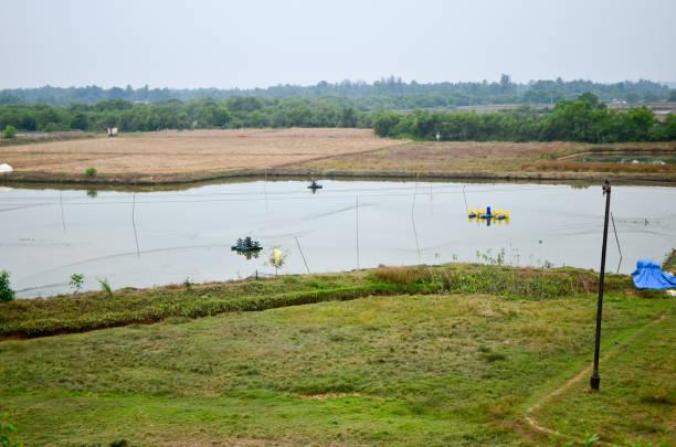 Schöne Szene von landwirtschaftlichem Indien (Goa - Mangalore-Abschnitt) – Foto