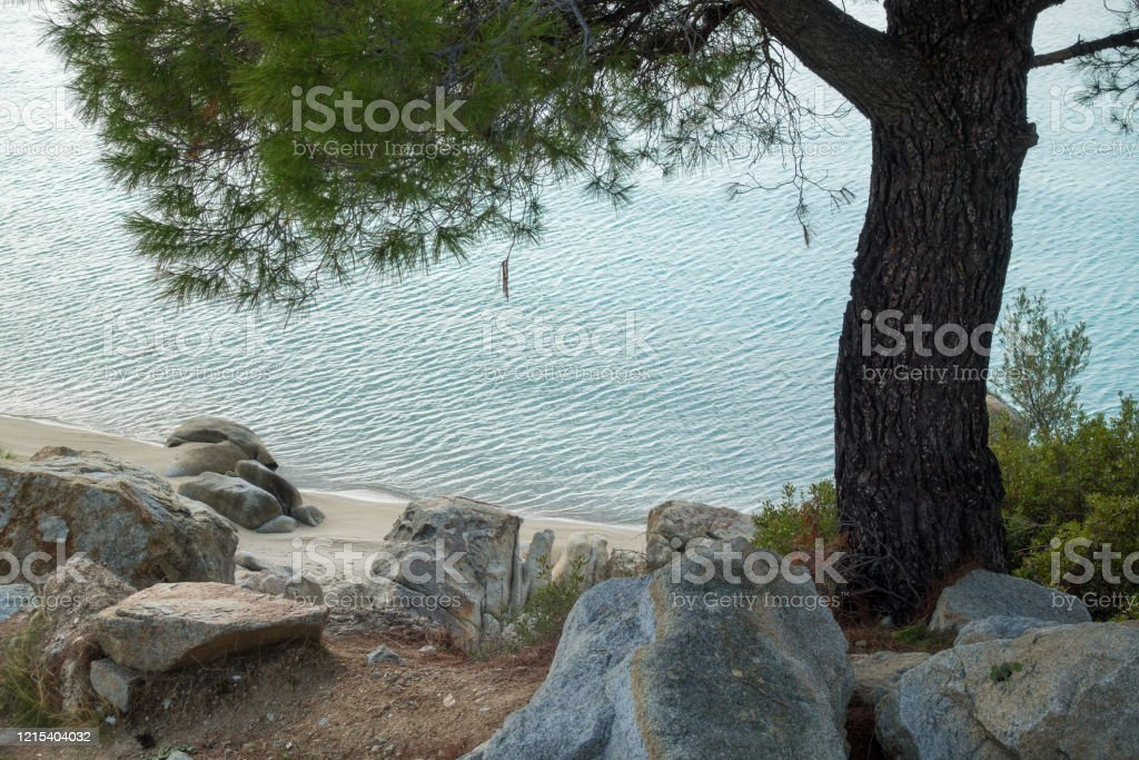Beautiful scenery by the sea in Koviou beach, Sithonia, Halkidiki, Greece Beautiful scenery by the sea in Koviou beach, Sithonia, Chalkidiki, Greece Awe Stock Photo