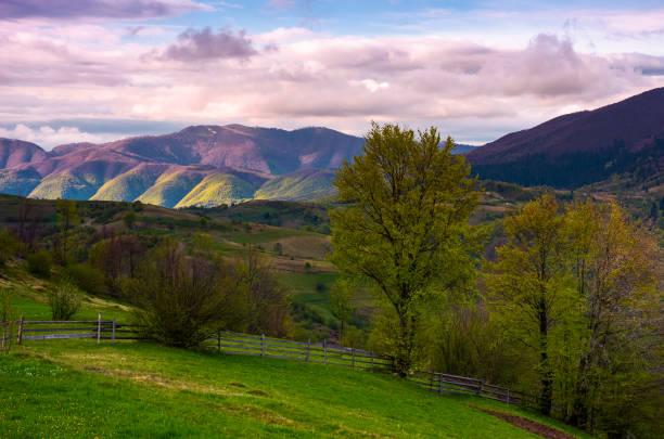 beau paysage dans les zones rurales montagneuses - éther photos et images de collection