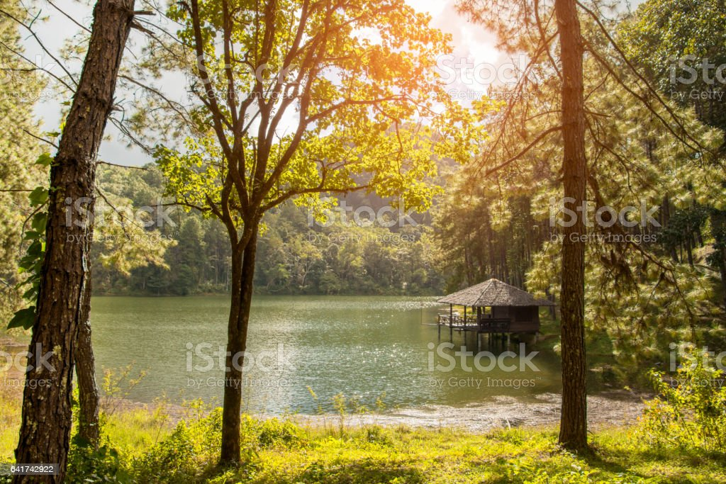 beautiful scenery of lodging house beside lake in the morning stock photo