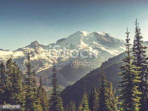 beautiful scenery of Mt. Rainier National Park,washington,usa.