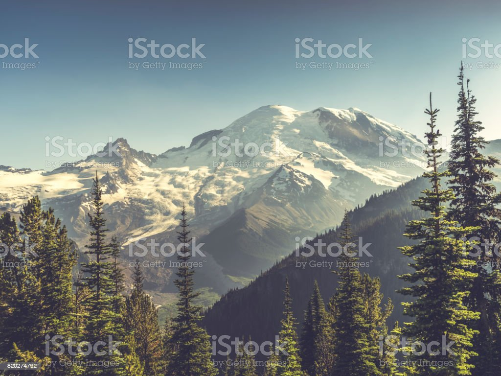 beautiful scenery of Mt. Rainier National Park stock photo