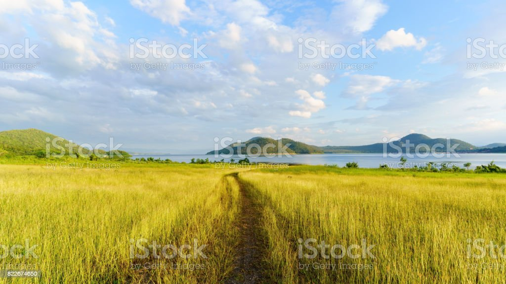 Beautiful scenery of Srinagarind Reservoir or Srinakharin dam with golden meadow in the morning , Kanchanaburi Province , Thailand stock photo