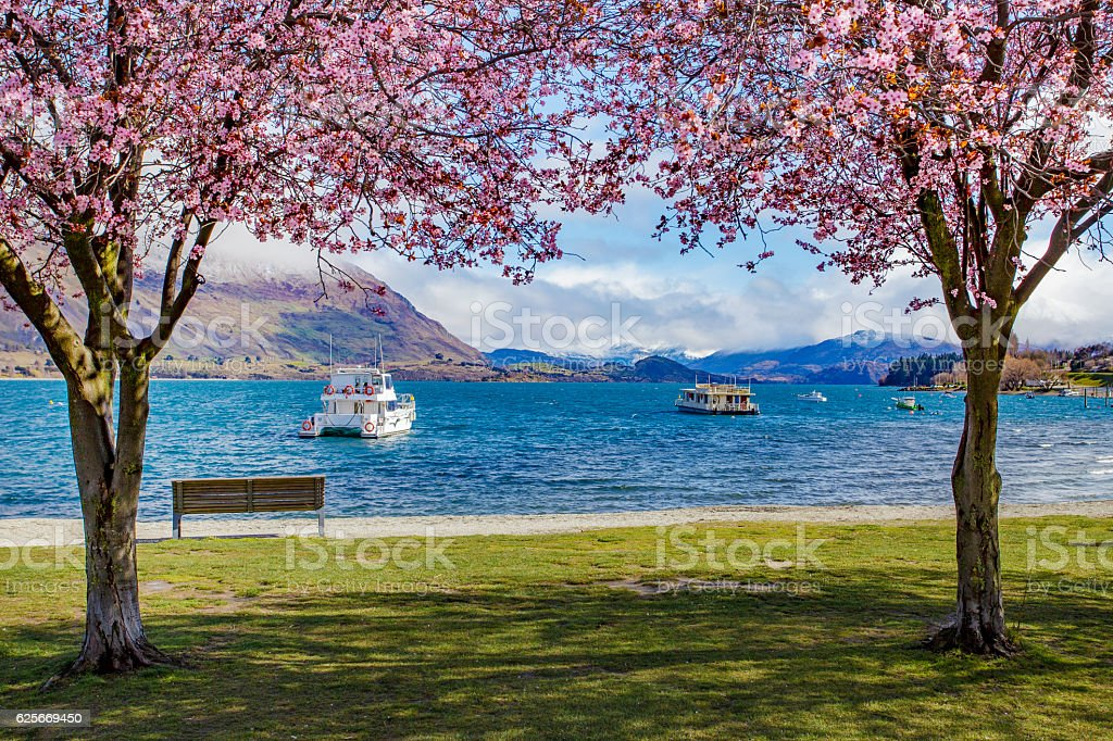 beautiful scenic of lake wanaka new zealand stock photo