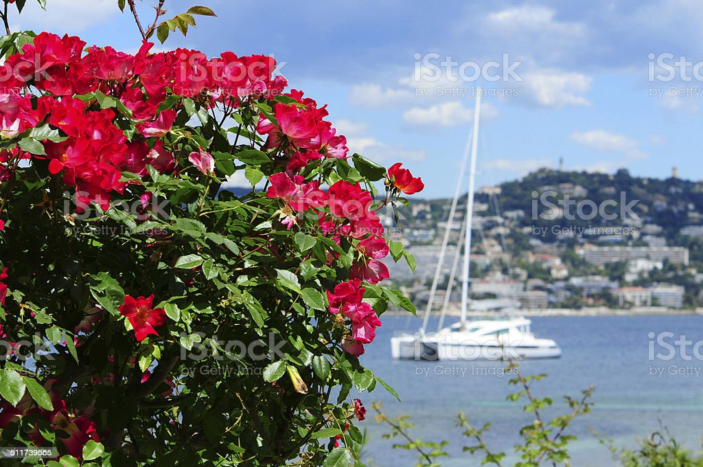 Beautiful sea view in Cannes stock photo