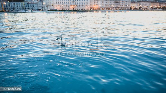 Beautiful seascape in Italy-Trieste at sunset