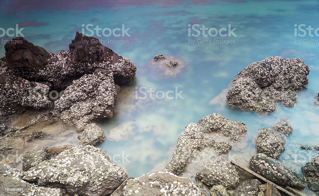 Beautiful seascape. Nature composition royalty-free stock photo