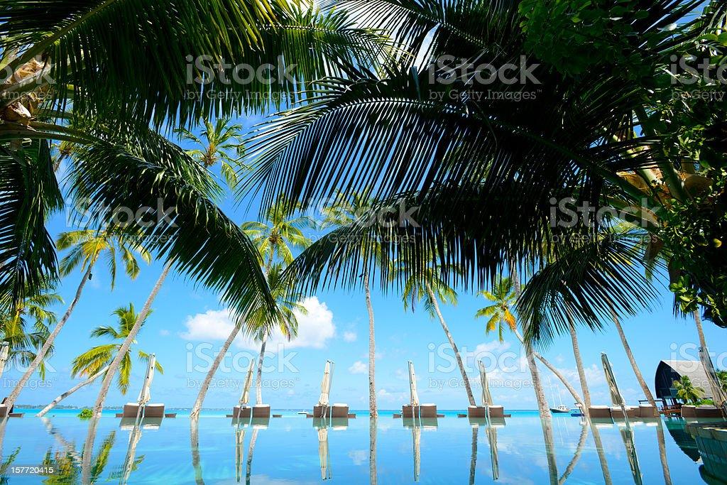 Beautiful Seaside Swimming Pool stock photo