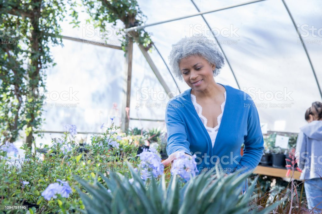 Beautiful senior adult African American woman smiles while shopping...