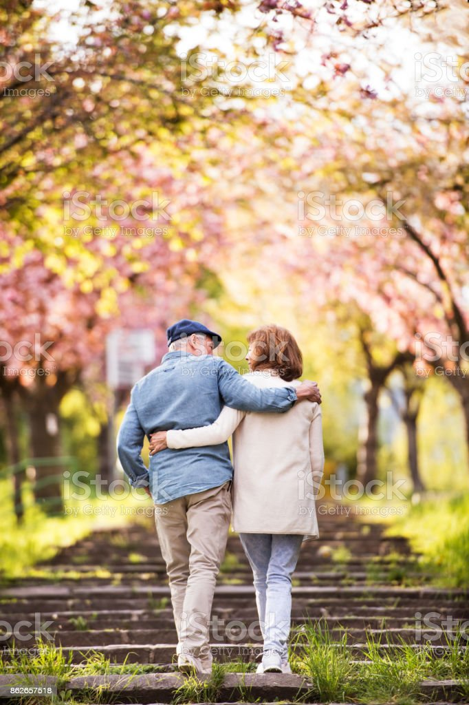 Lindo casal sênior no amor fora na natureza da primavera. - foto de acervo