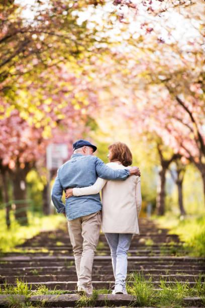 schönes älteres paar in liebe draußen in der natur der frühling. - treppe außen stock-fotos und bilder
