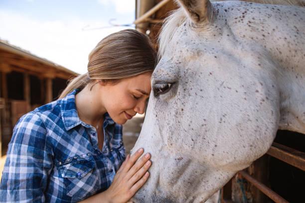 belle fille sereine passant un moment tranquille avec un cheval - cheval photos et images de collection