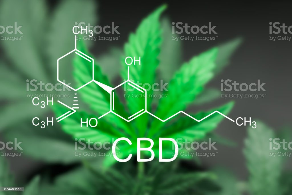 A beautiful sheet of cannabis marijuana in the defocus with the image of the formula CBD foto stock royalty-free