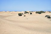 Beautiful shore landscape of white sand dunes at maspalomas beach, charming and calm seascape with blue sky