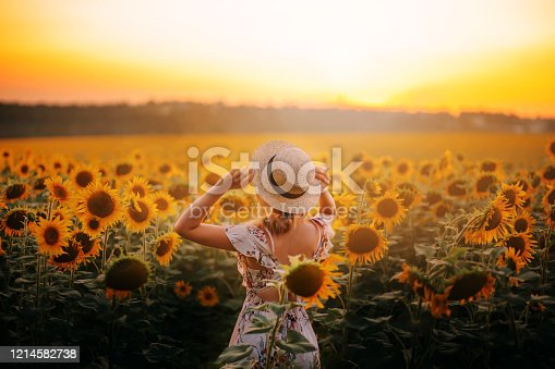 beautiful silhouette mysterious enjoy nature woman bright photo, summer field sunflowers yellow flowers. girl in light beige summer dress straw boater hat lady hot sun model back sunset country life