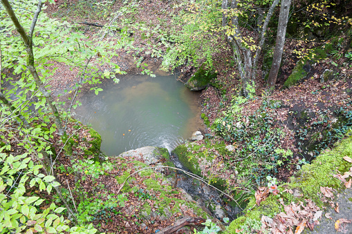 Beautiful small pond on forest creek. High angle view