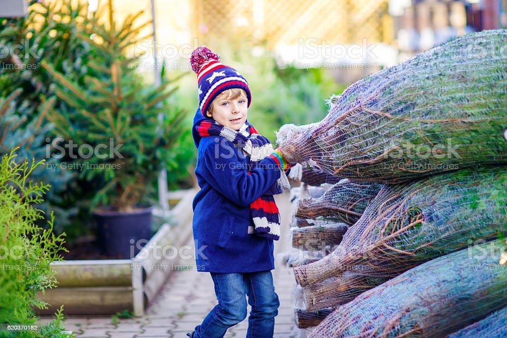 Piękny uśmiech Mały chłopiec trzyma Choinka zbiór zdjęć royalty-free