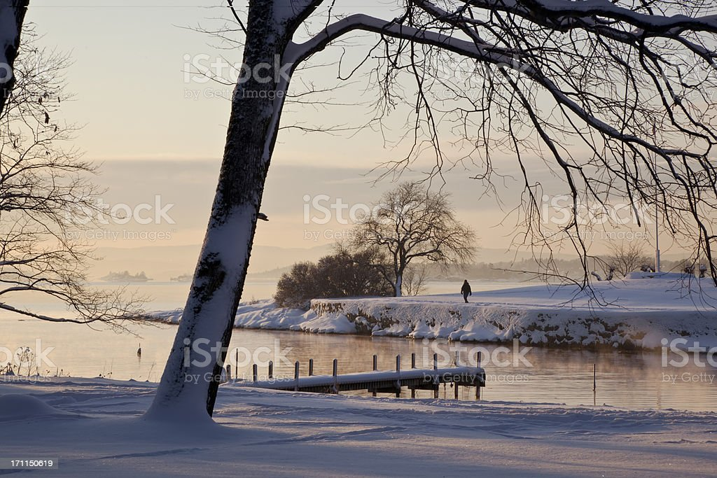 Beautiful snow covered landscape  with deciduous  trees at sunset. royalty-free stock photo