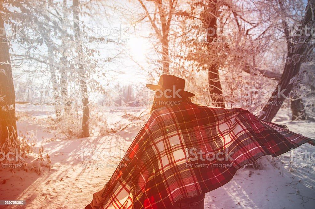 Beautiful snowy day stock photo