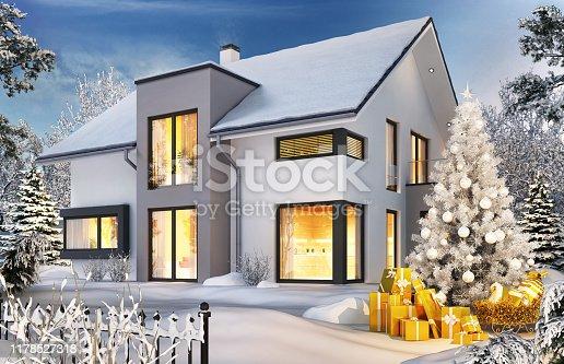 Christmas tree and modern house