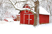 Scenic view with red barn in the cowered by fresh snow wood. Agriculture, farming and rural life at winter background.
