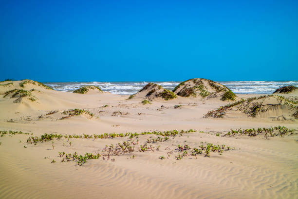 A beautiful soft and fine sandy beach along the gulf coast of Texas in South Padre Island, Texas stock photo
