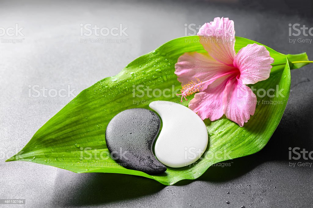 beautiful spa concept of pink hibiscus flower and Yin-Yang​​​ foto