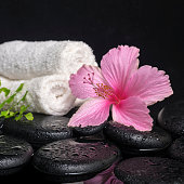 Beautiful spa still life of pink hibiscus, branch fern, drops and towels on zen stones with reflection water, closeup